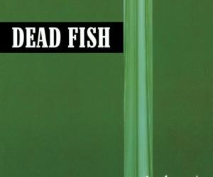 Capa_Dead_Fish_Sonho_Médio